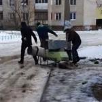 В Ржеве среди бела дня идёт разграбление бывшей молочной кухни? Видео