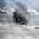 С 12 по 14 февраля в регионе ожидаются порывистый ветер, гололедица, снежные заносы и метель