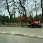 Жители Ржева подозревают, что деревья в городском парке выпиливают под торговые точки