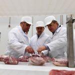 Кредиты компании «Коралл», которая была вынуждена уничтожить 400 тысяч свиней, пролонгированы
