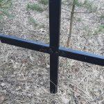 Не к месту. Жители Ржева обеспокоены кладбищем домашних животных
