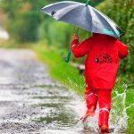 Нас ждёт дождливая, но тёплая неделя