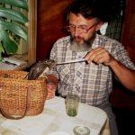 Животные – не помойка! Чем кормить лесных зверей и птиц в домашних условиях?