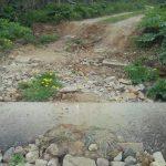 Убили родник, а заодно и дорогу: близ деревни Старцево Ржевского района провалилась проезжая часть