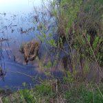 Ликвидация разлива нефтепродуктов в Тьмаку займет несколько дней