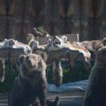 Культ смерти в Тверской области. Торговля убитыми животными вдоль трасс возмутила известного путешественника