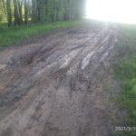 Без дорог, фонарей и с «криминальным» кладбищем: деревни Калязинского района взывают о помощи