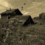 Тверская область: вымираем или оптимизируемся