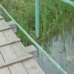 Прокуратура признала мост в Бологовском районе опасным для жизни